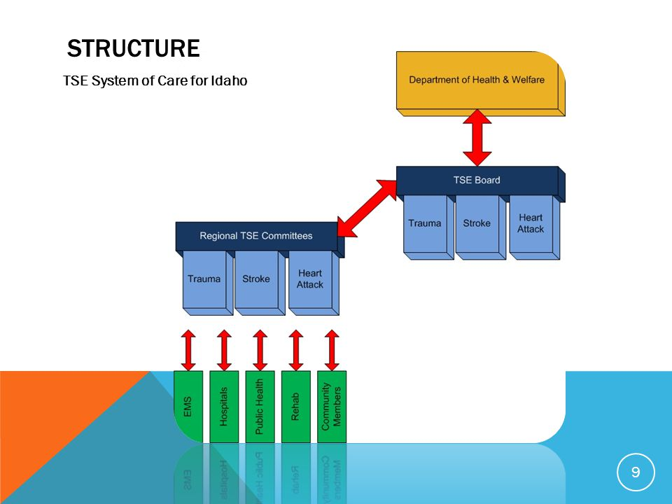Structure TSE System of Care for Idaho