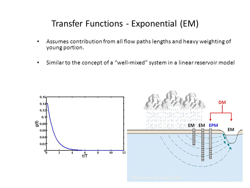 Transfer Functions - Exponential (EM)