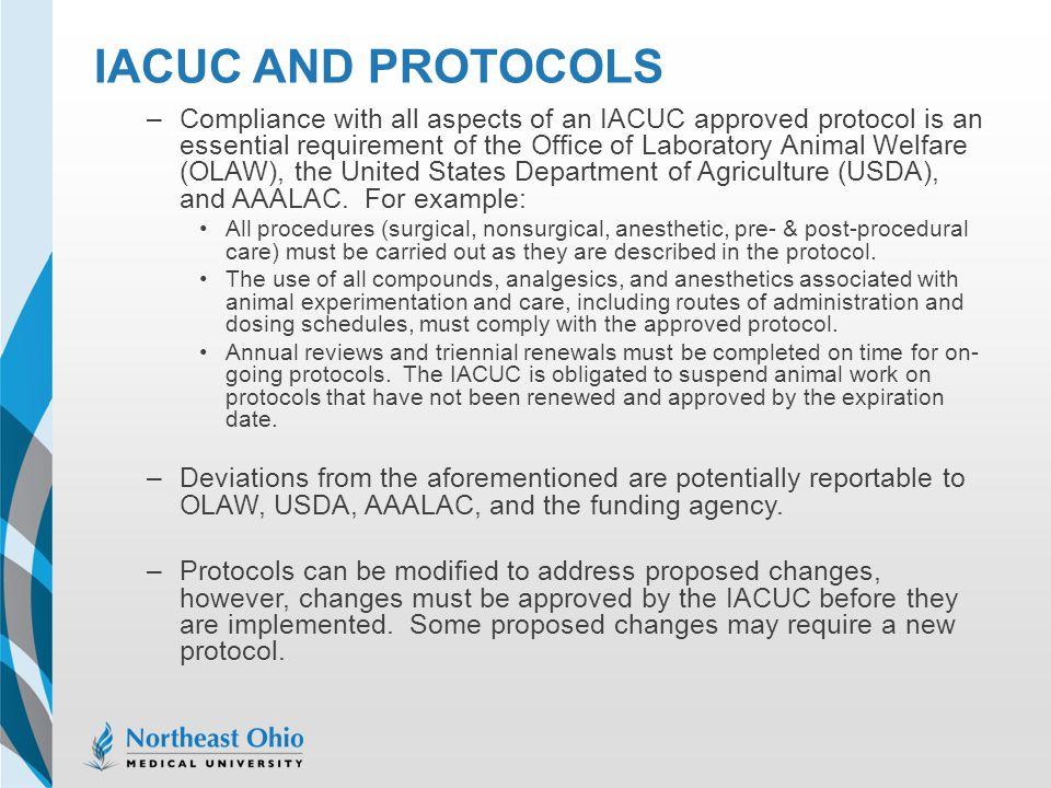 IACUC and Protocols