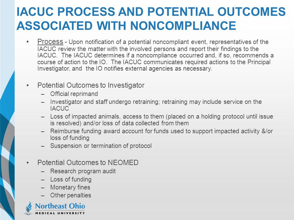 IACUC Process and Potential Outcomes Associated with Noncompliance