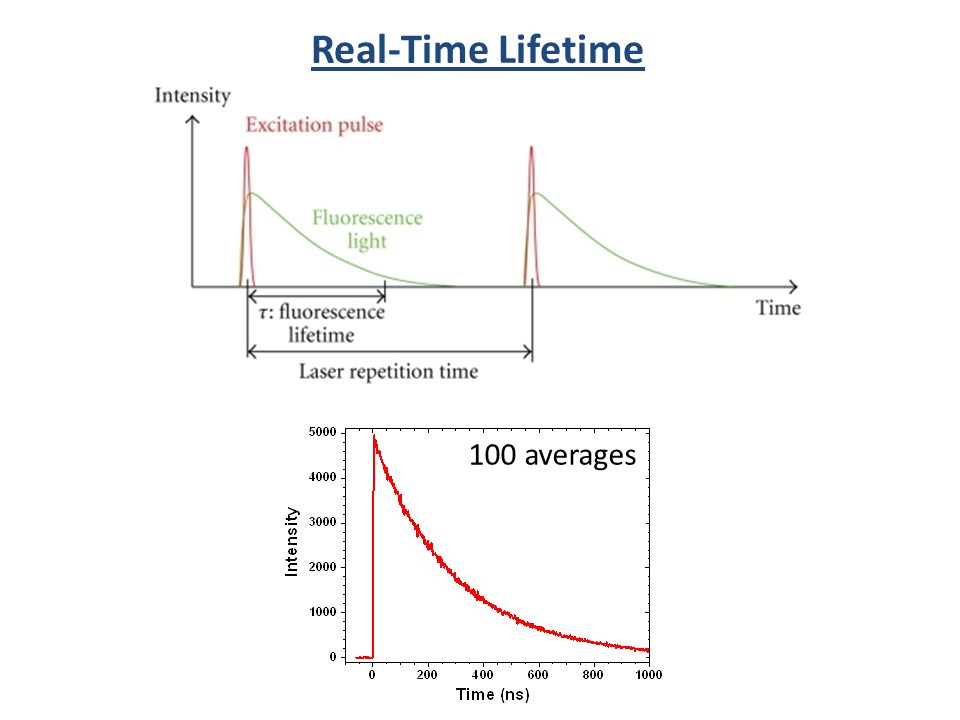 Real-Time Lifetime 100 averages