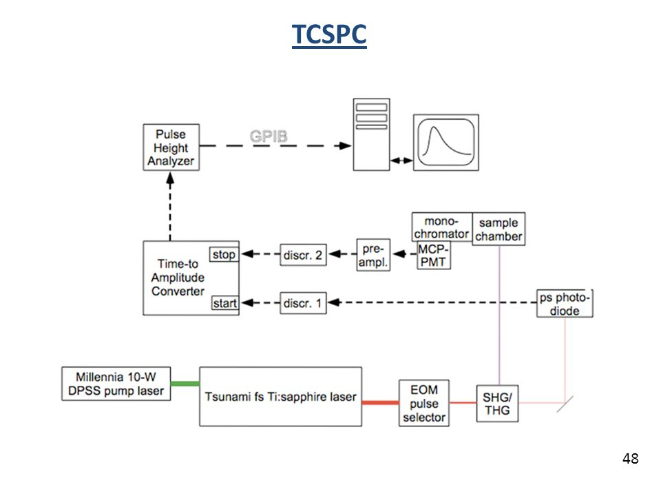 TCSPC 48