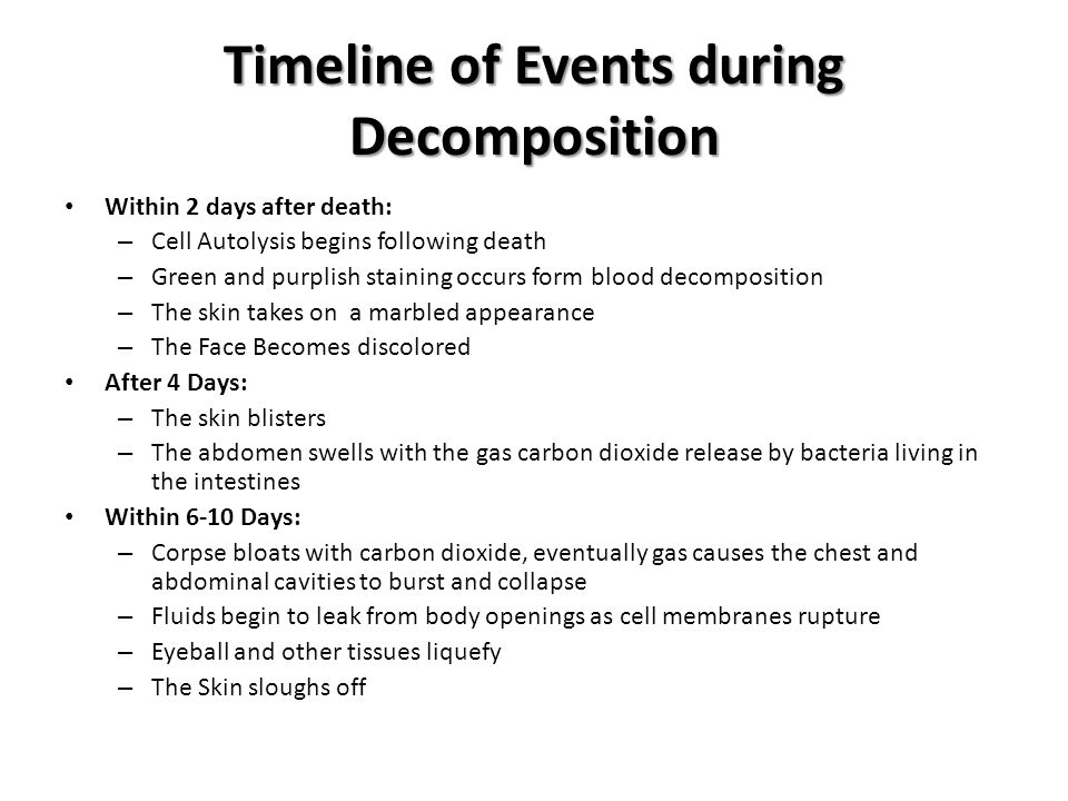 Timeline of Events during Decomposition