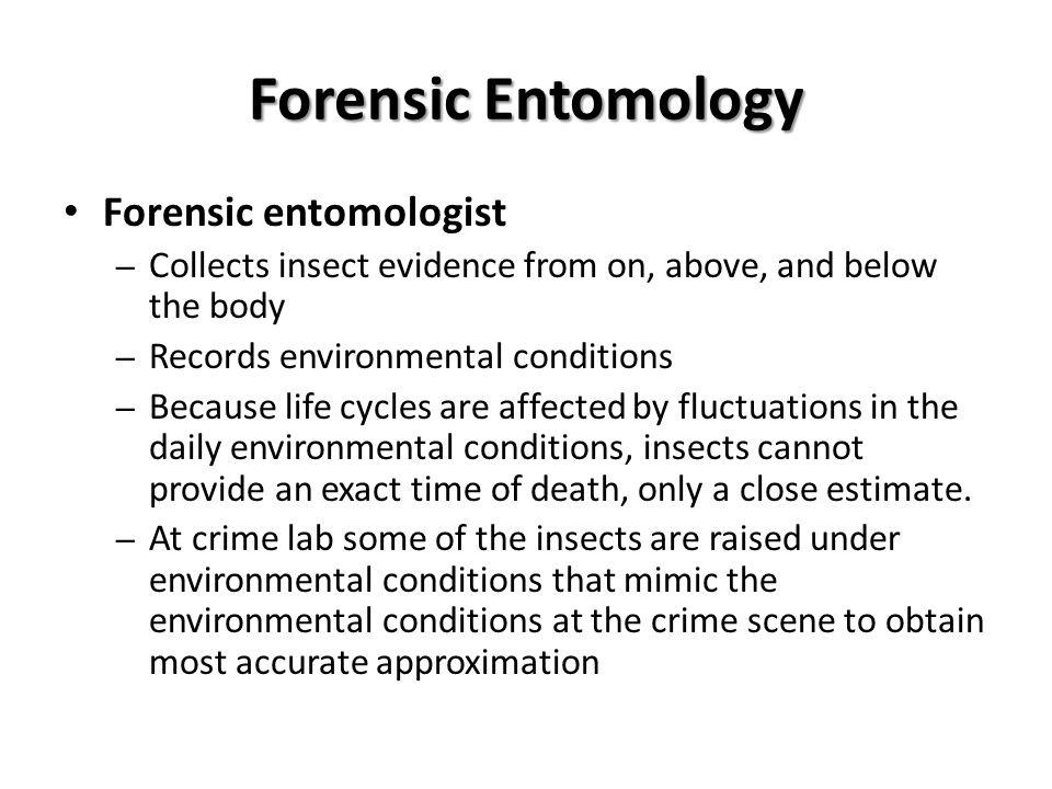 Forensic Entomology Forensic entomologist