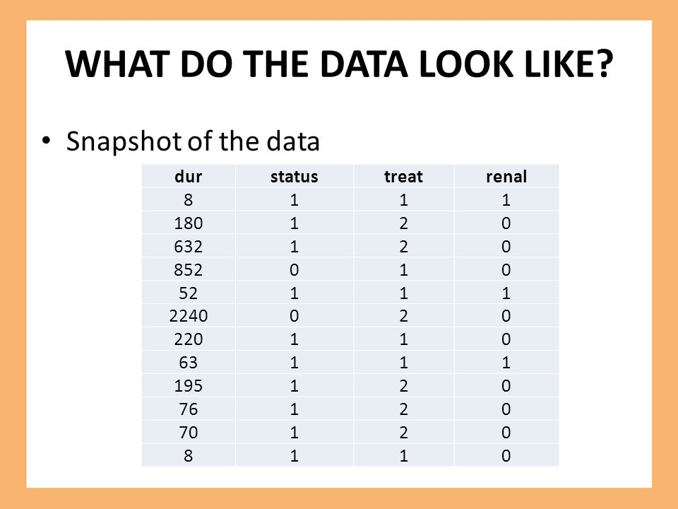 WHAT DO THE DATA LOOK LIKE