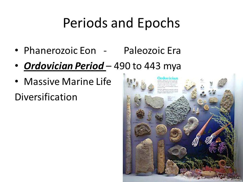 Periods and Epochs Phanerozoic Eon - Paleozoic Era