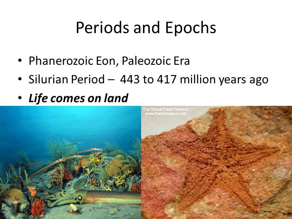 Periods and Epochs Phanerozoic Eon, Paleozoic Era