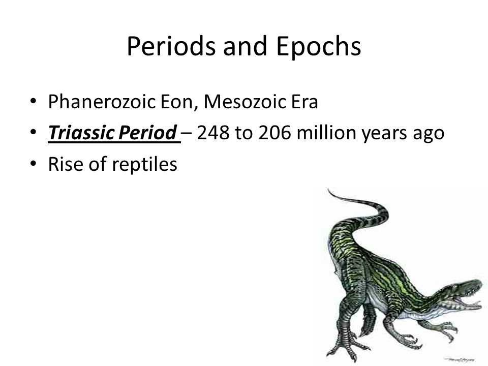 Periods and Epochs Phanerozoic Eon, Mesozoic Era