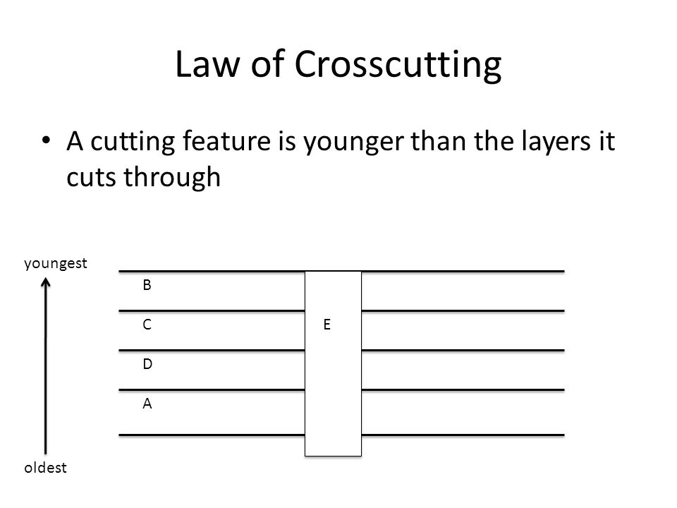 Law of Crosscutting A cutting feature is younger than the layers it cuts through. youngest. B. C.
