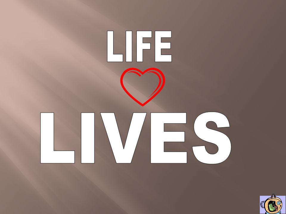LIFE LIVES