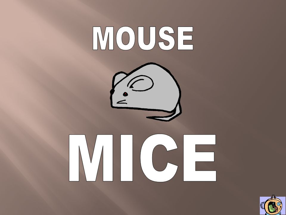 MOUSE MICE