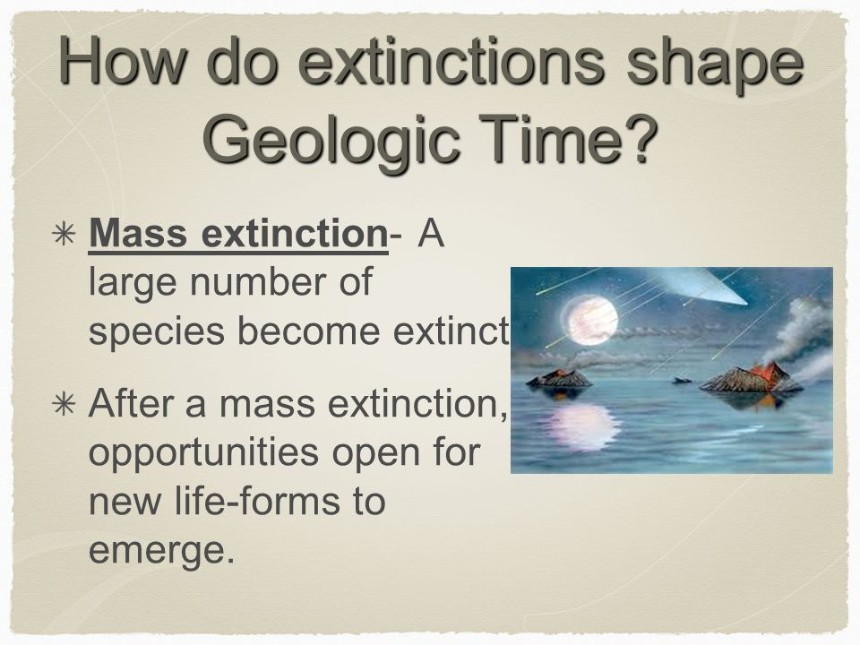 How do extinctions shape Geologic Time