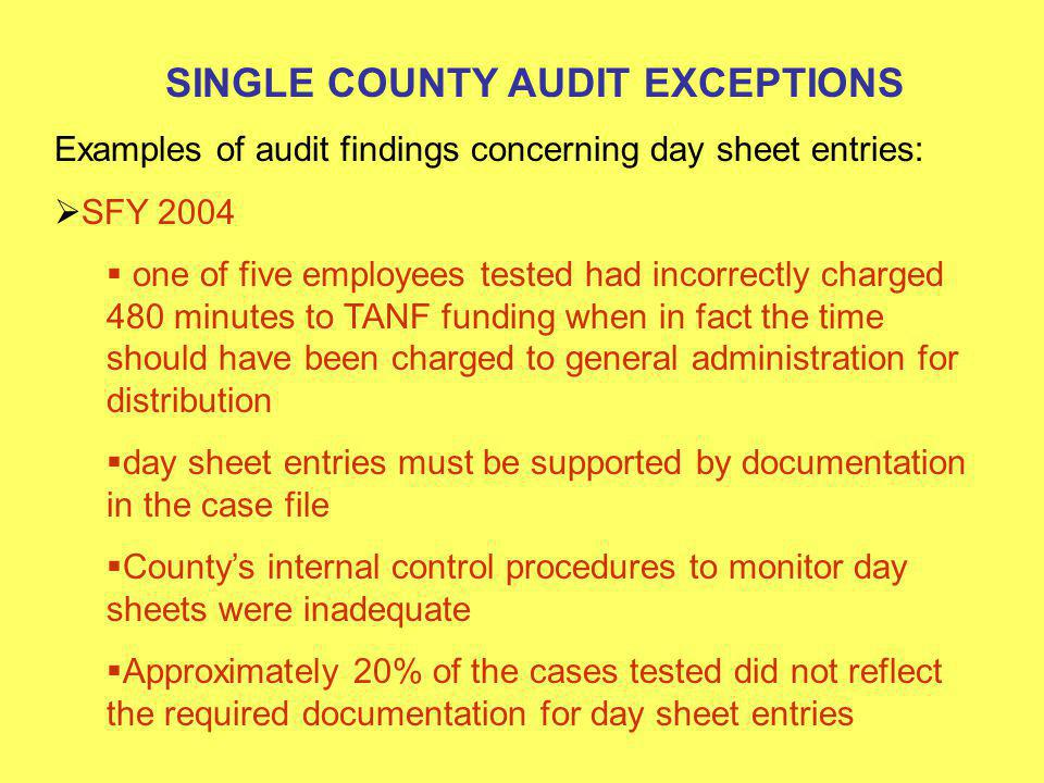 SINGLE COUNTY AUDIT EXCEPTIONS