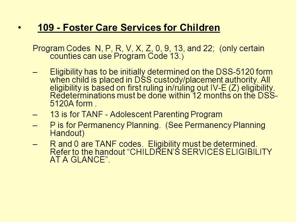 109 - Foster Care Services for Children