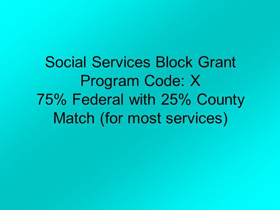 Social Services Block Grant Program Code: X 75% Federal with 25% County Match (for most services)