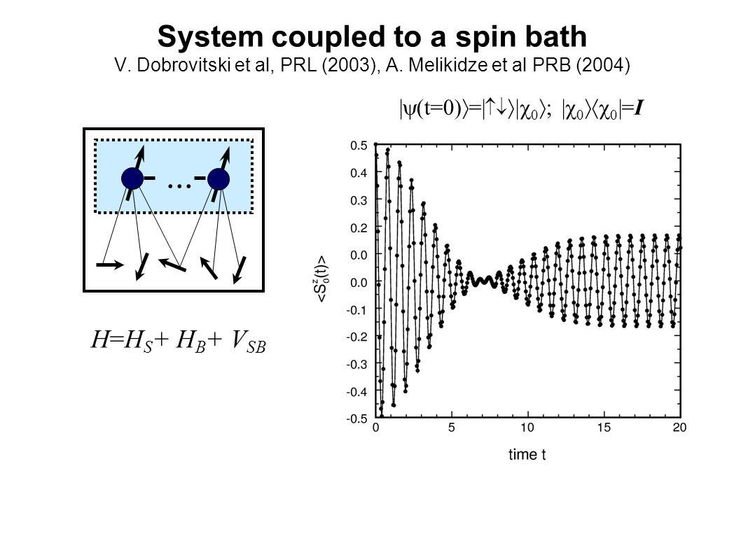 System coupled to a spin bath V. Dobrovitski et al, PRL (2003), A