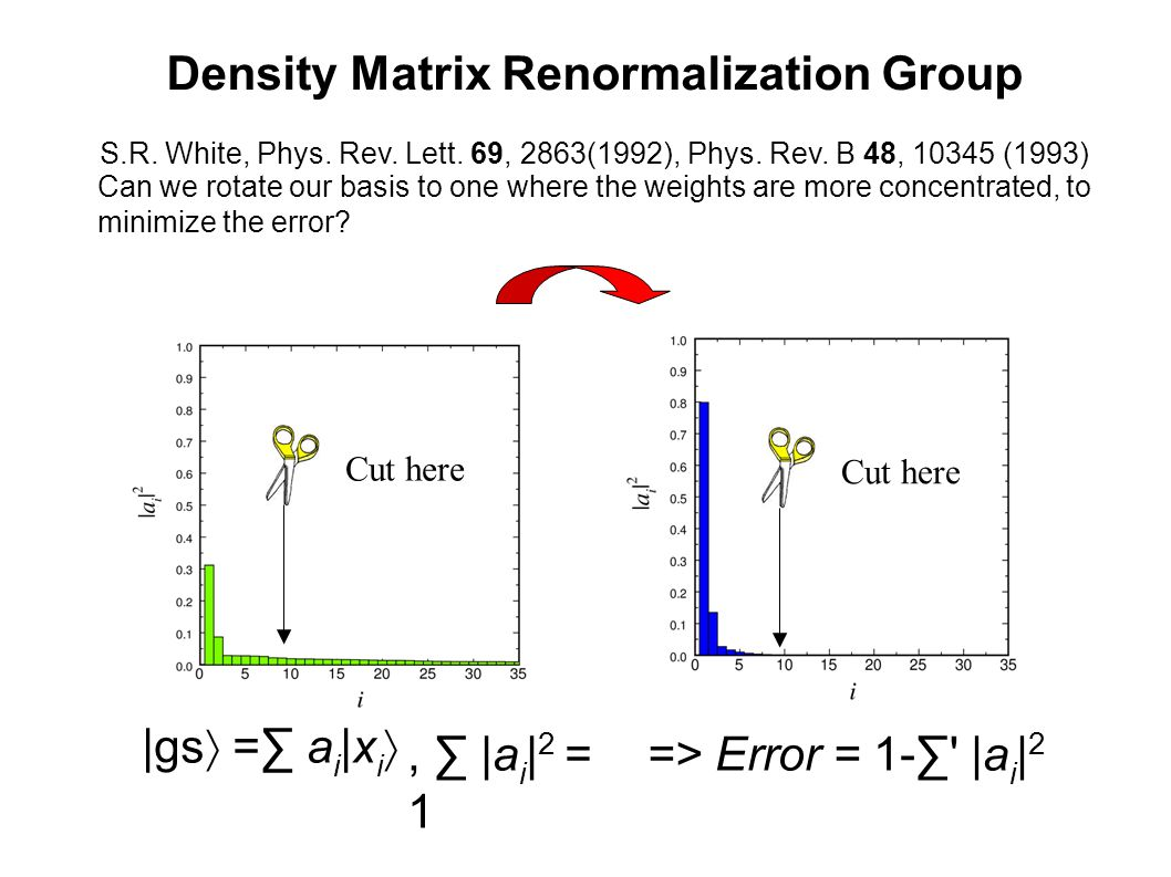 Density Matrix Renormalization Group