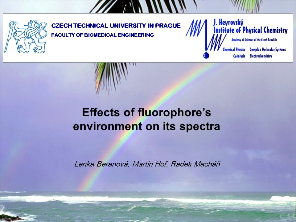 Effects of fluorophore's environment on its spectra