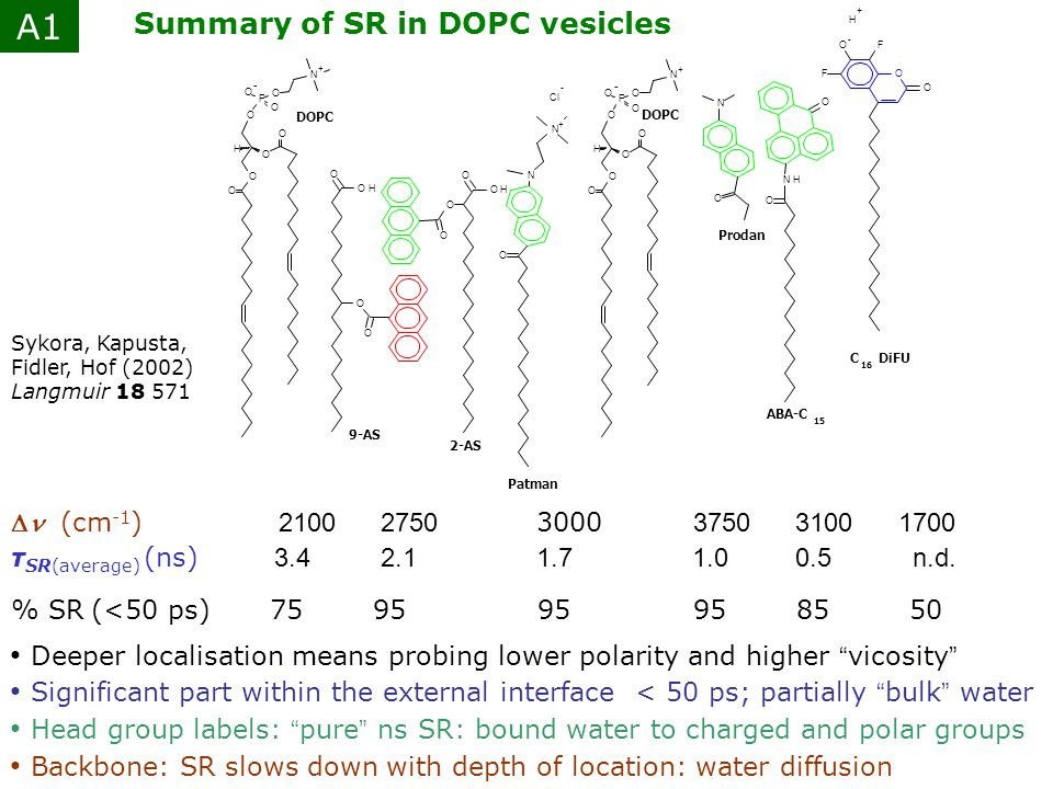 A1 Summary of SR in DOPC vesicles