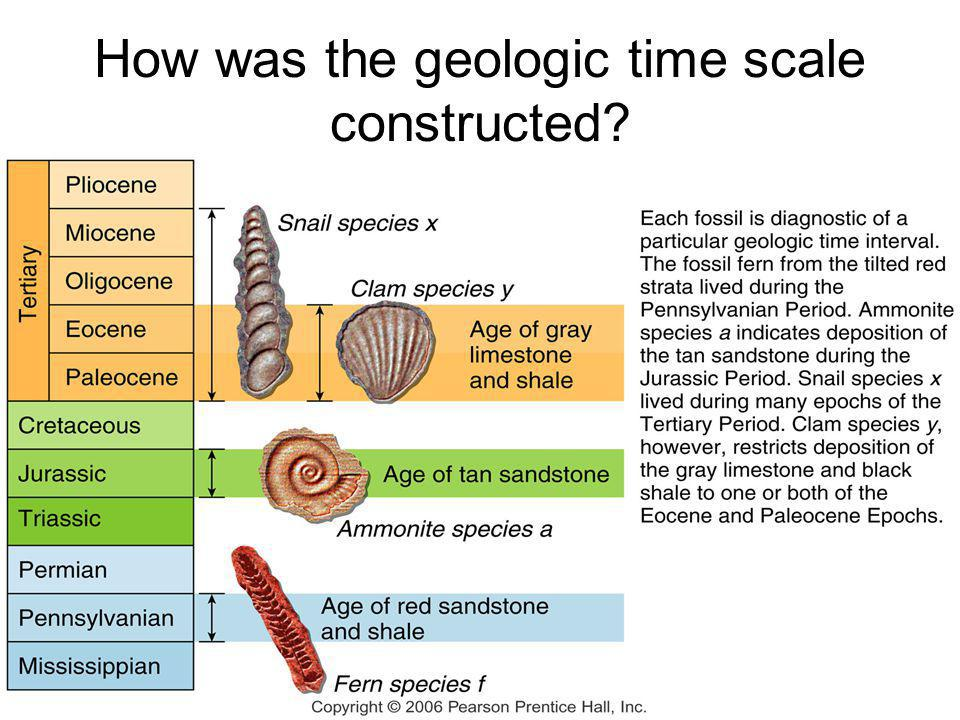 How was the geologic time scale constructed