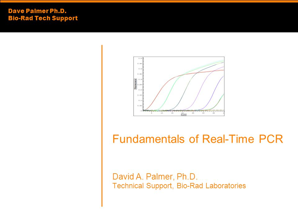 Fundamentals of Real-Time PCR