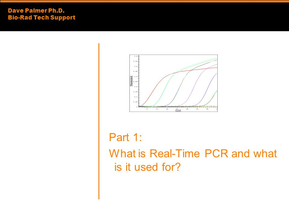Part 1: What is Real-Time PCR and what is it used for