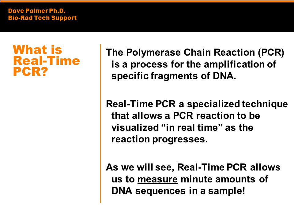 What is Real-Time PCR The Polymerase Chain Reaction (PCR) is a process for the amplification of specific fragments of DNA.