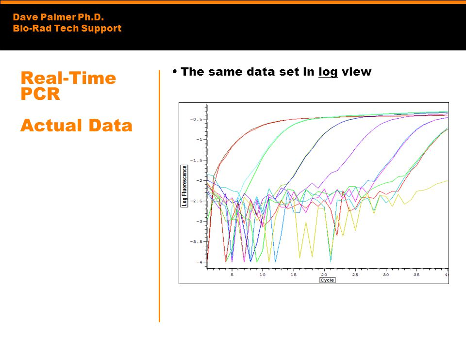 Real-Time PCR Actual Data