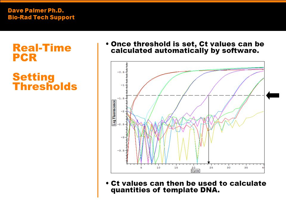 Real-Time PCR Setting Thresholds