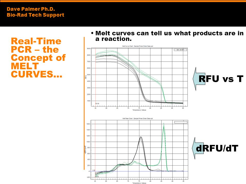 Real-Time PCR – the Concept of MELT CURVES…