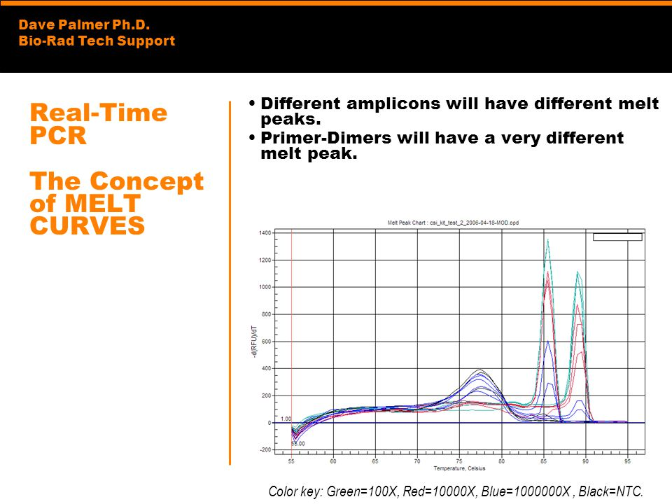 Real-Time PCR The Concept of MELT CURVES