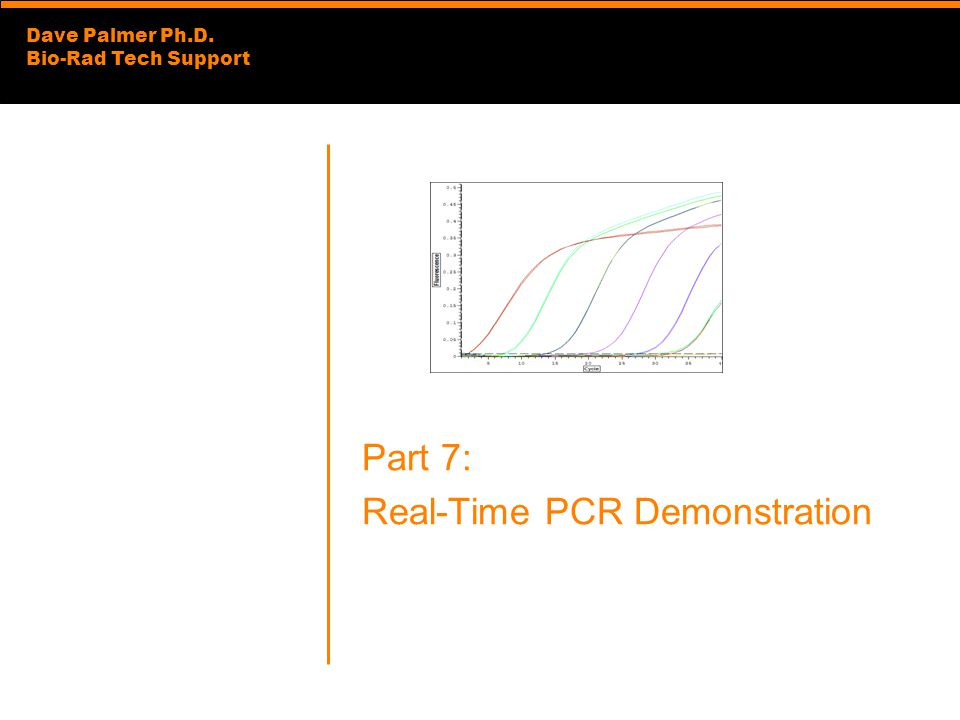 Part 7: Real-Time PCR Demonstration