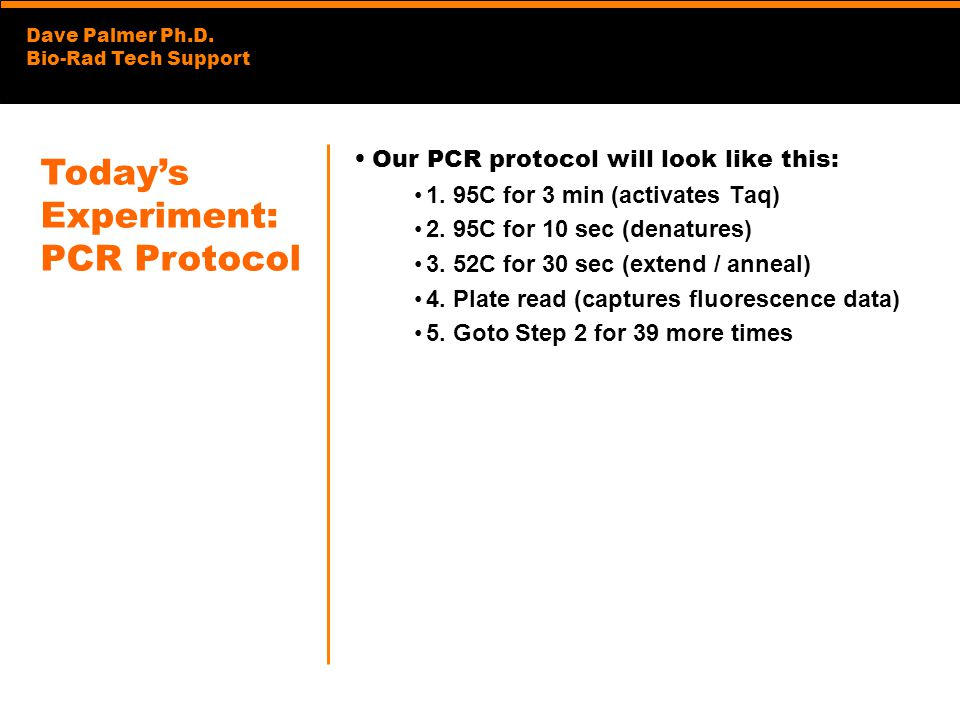 Today's Experiment: PCR Protocol Our PCR protocol will look like this: