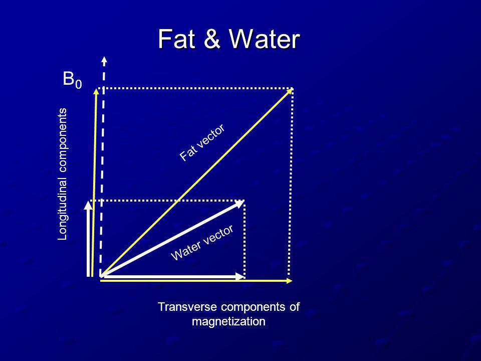 Fat & Water B0 Fat vector Longitudinal components Water vector