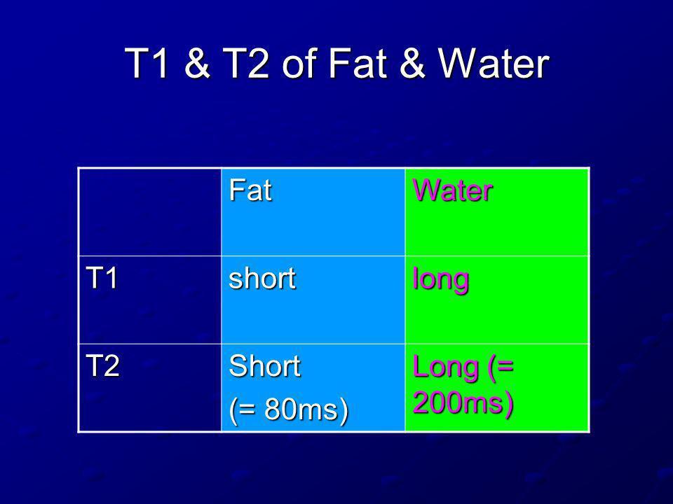 T1 & T2 of Fat & Water Fat Water T1 short long T2 Short (= 80ms)