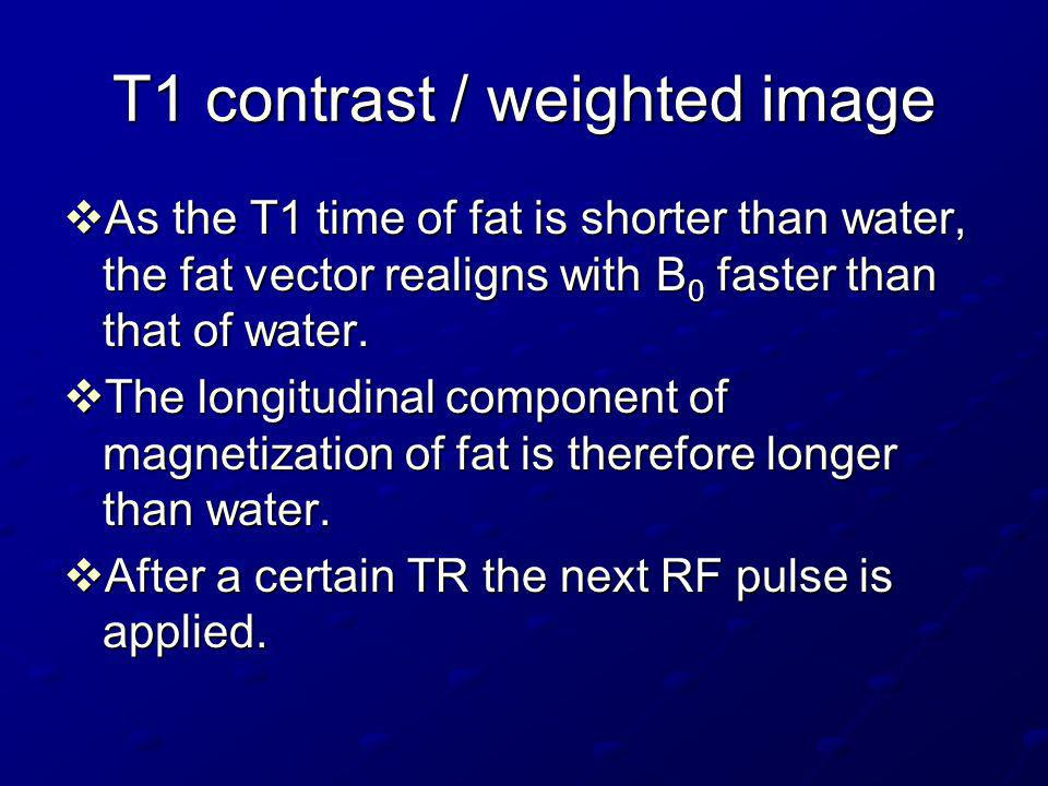T1 contrast / weighted image