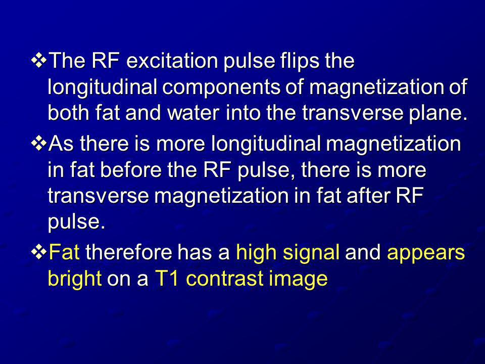 The RF excitation pulse flips the longitudinal components of magnetization of both fat and water into the transverse plane.