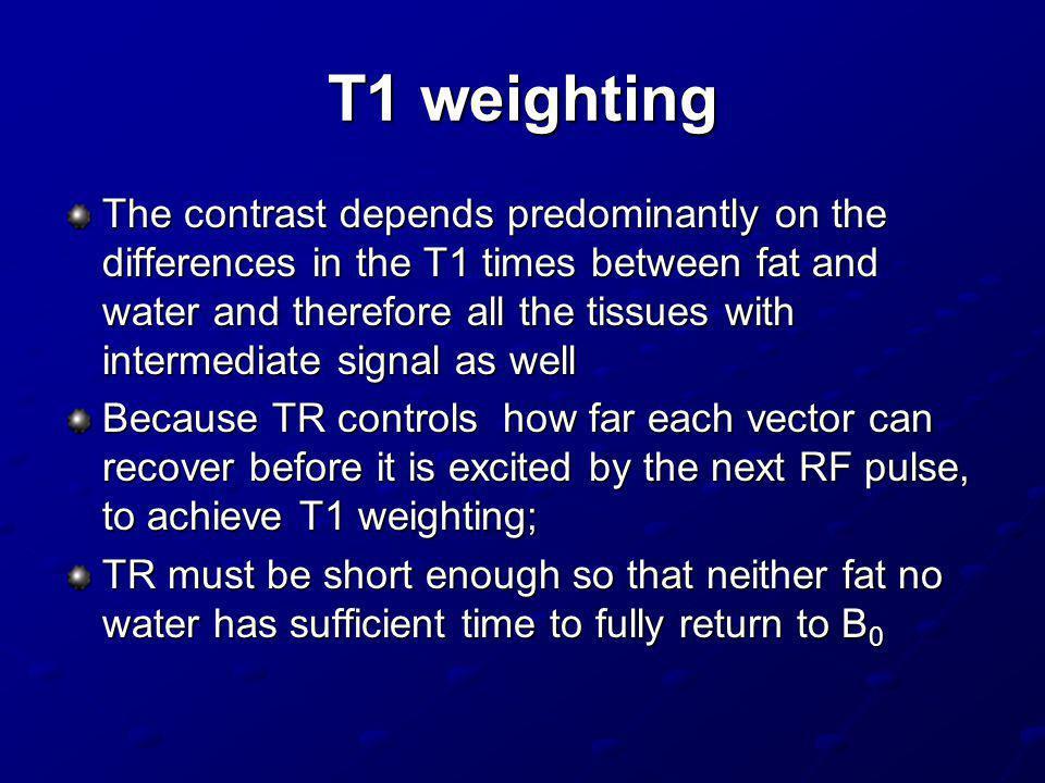 T1 weighting