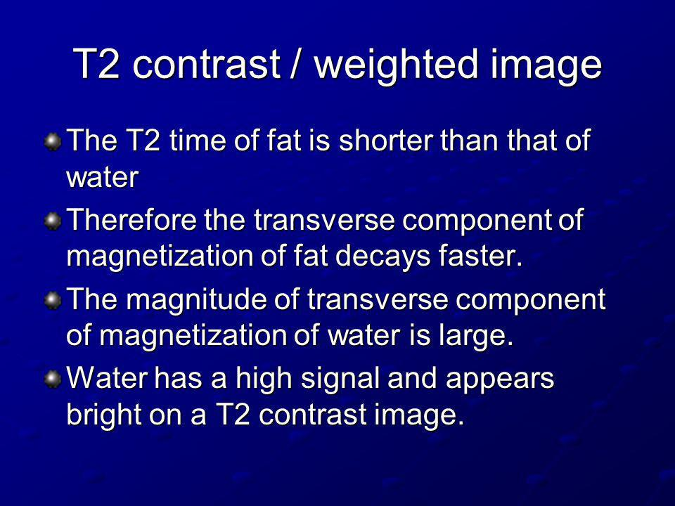 T2 contrast / weighted image