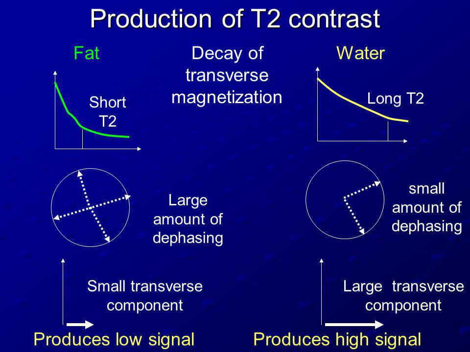 Production of T2 contrast