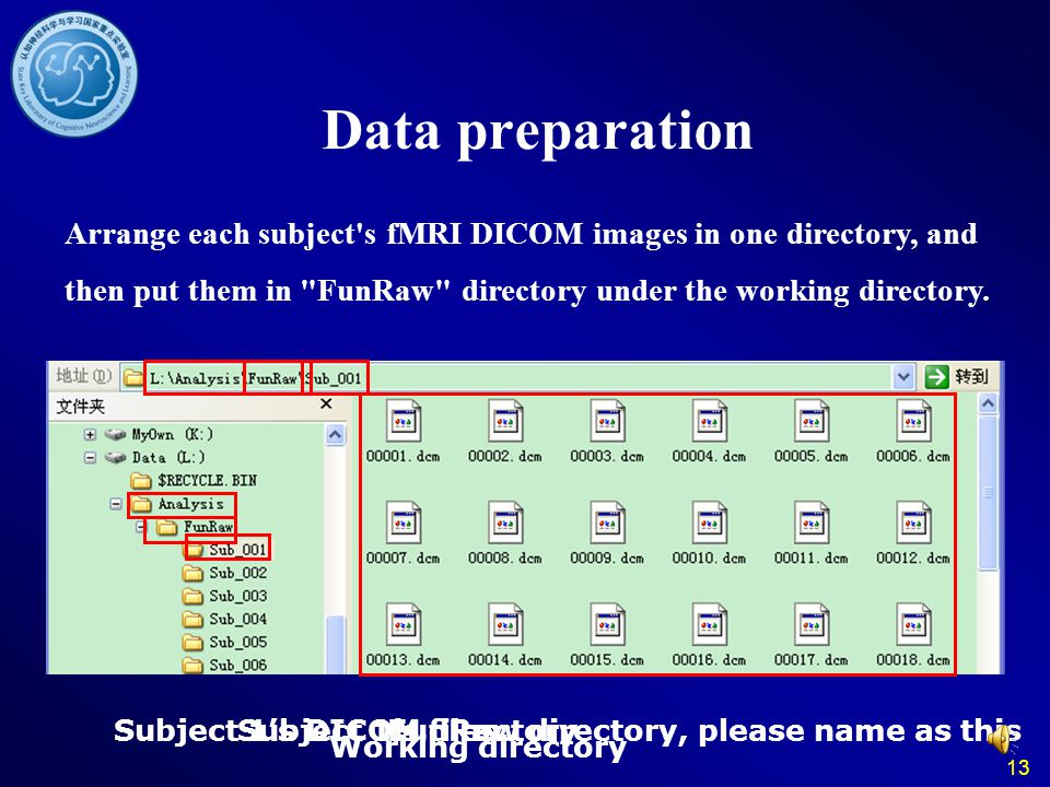 Data preparation Arrange each subject s fMRI DICOM images in one directory, and then put them in FunRaw directory under the working directory.
