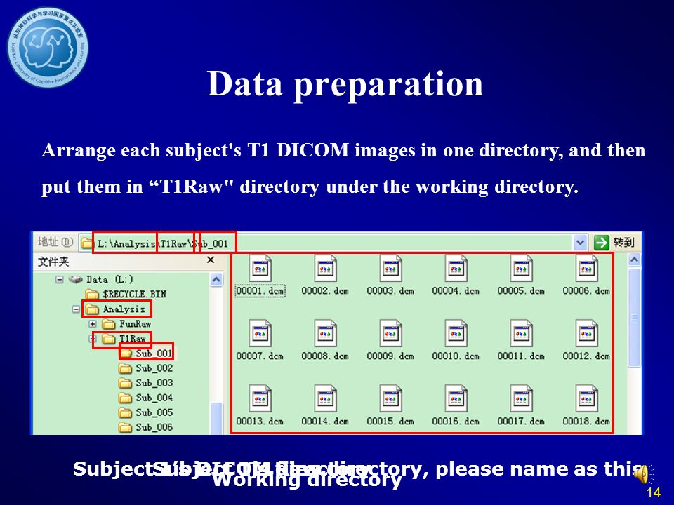Data preparation Arrange each subject s T1 DICOM images in one directory, and then put them in T1Raw directory under the working directory.