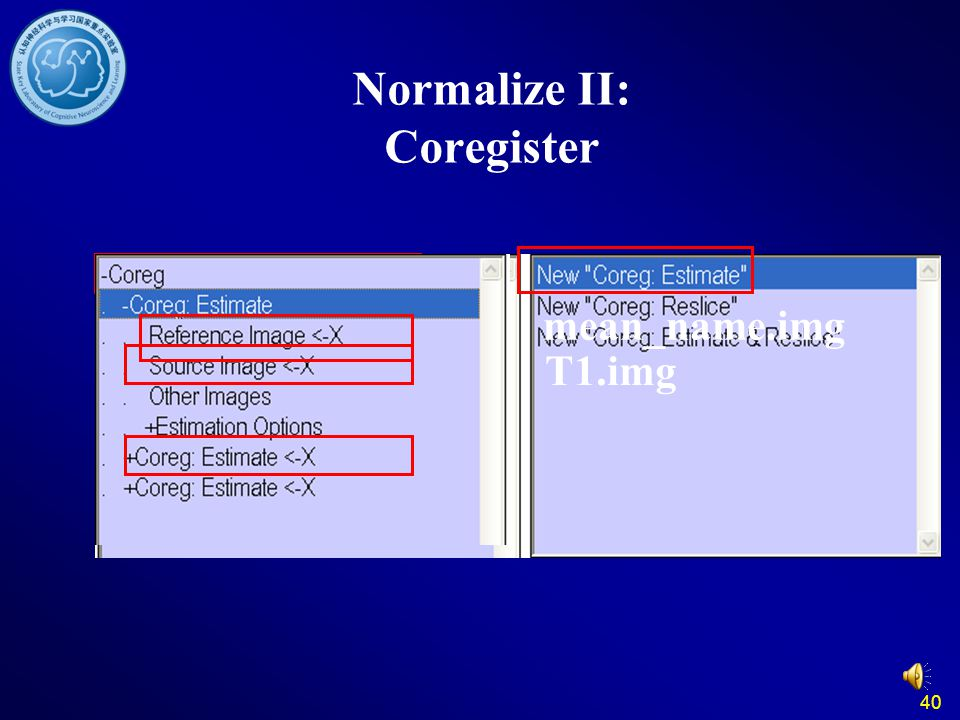 Normalize II: Coregister