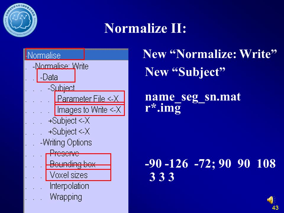 Normalize II: New Normalize: Write New Subject name_seg_sn.mat