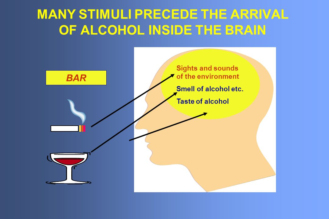 MANY STIMULI PRECEDE THE ARRIVAL OF ALCOHOL INSIDE THE BRAIN