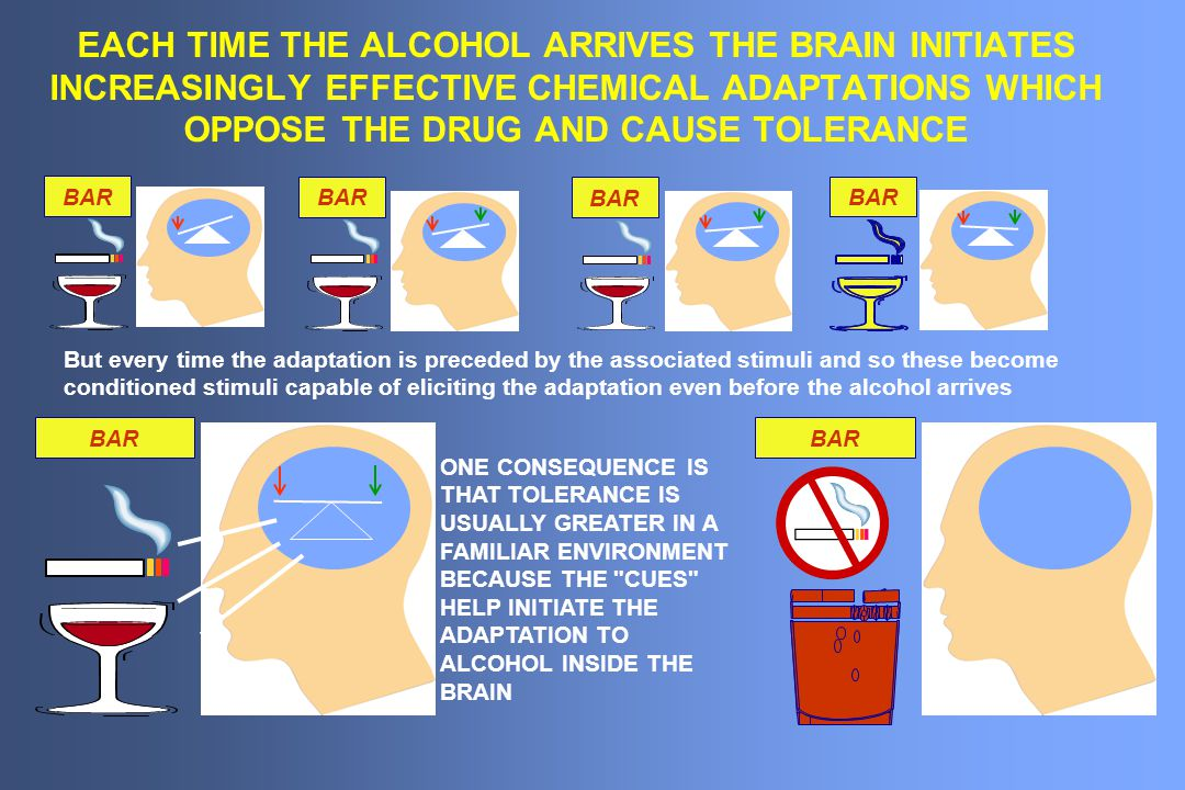 EACH TIME THE ALCOHOL ARRIVES THE BRAIN INITIATES INCREASINGLY EFFECTIVE CHEMICAL ADAPTATIONS WHICH OPPOSE THE DRUG AND CAUSE TOLERANCE
