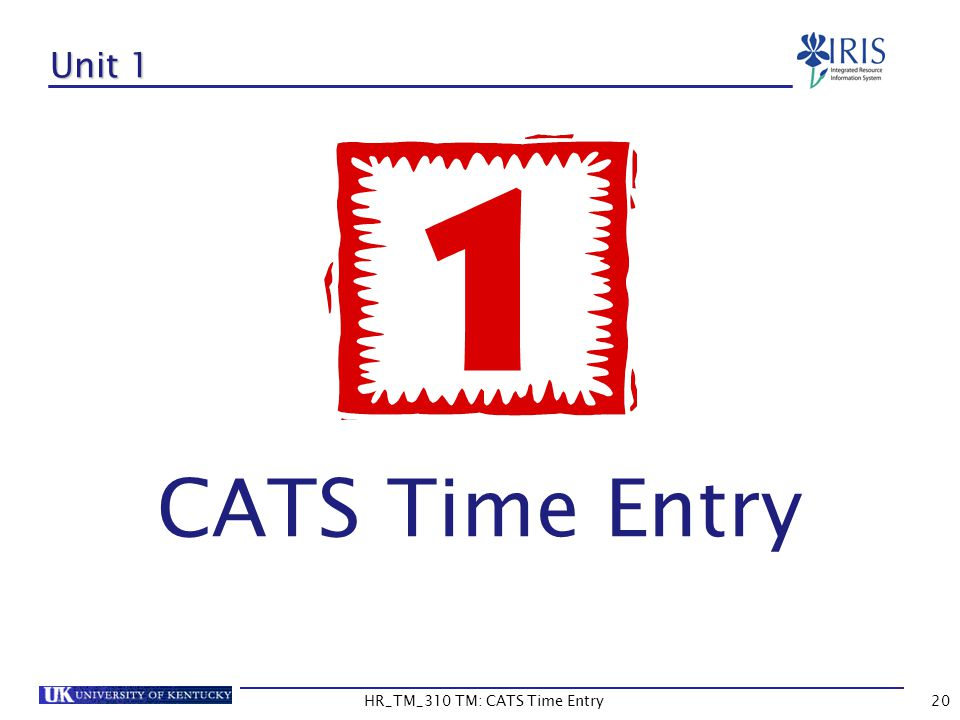 HR_TM_310 TM: CATS Time Entry