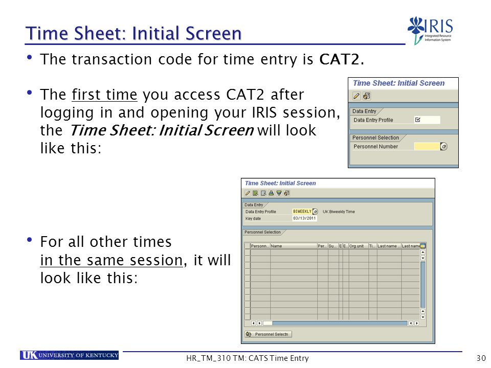 Time Sheet: Initial Screen