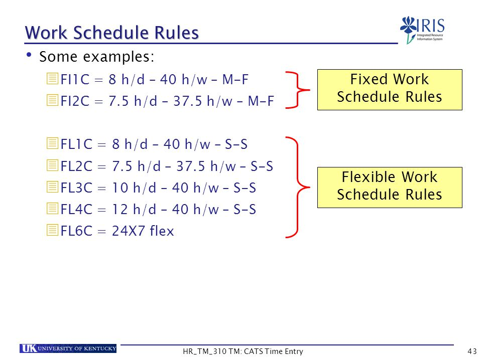 Work Schedule Rules Some examples: Fixed Work Schedule Rules