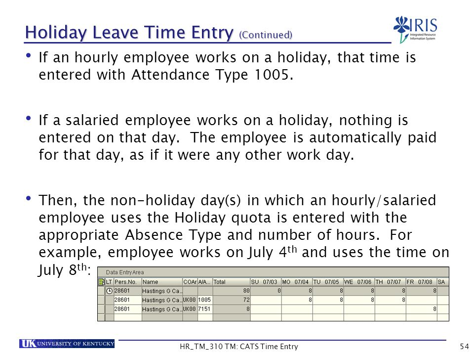 Holiday Leave Time Entry (Continued)